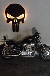 Click image for larger version.  Name:sportster.jpg Views:34 Size:189.7 KB ID:74789