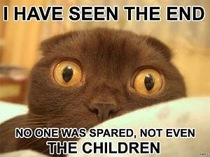 Click image for larger version.  Name:I-Have-Seen-The-End-Funny-Scared-Cat-Meme.jpg Views:1 Size:35.7 KB ID:94736