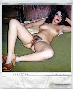 Click image for larger version.  Name:polaroid2.jpg Views:33 Size:108.4 KB ID:104082