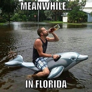 Click image for larger version.  Name:Floridameanwhile-in-florida-500x500.jpg Views:0 Size:73.3 KB ID:98495