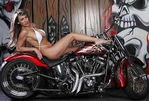 Click image for larger version.  Name:bikinibeaut.jpg Views:3 Size:68.1 KB ID:104475