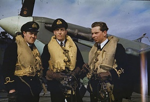 Click image for larger version.  Name:1 Fleet Air Arm WWII.jpg Views:3 Size:67.8 KB ID:103302