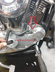 Click image for larger version.  Name:bike ques 2.jpg Views:3 Size:27.9 KB ID:97119