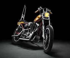 Click image for larger version.  Name:Ironhead_front_view.jpg Views:23 Size:128.9 KB ID:55698
