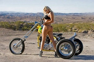 Click image for larger version.  Name:trike3.jpg Views:10 Size:70.9 KB ID:93743