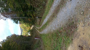 Click image for larger version.  Name:Driveway.jpg Views:5 Size:297.3 KB ID:100138