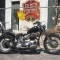 DaveyRiot's Profile
